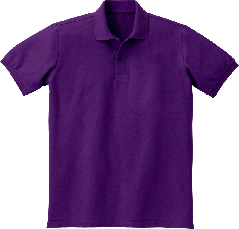 ASP-S42 ベーシックポロシャツの画像